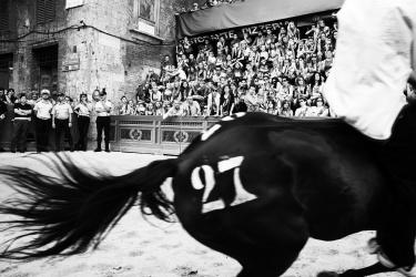 Il Palio, vita e orgoglio di Siena