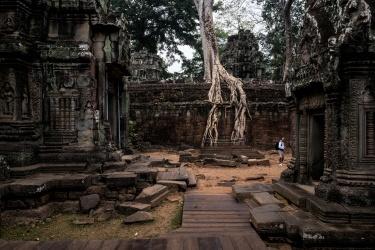 Cambogia - Angkor Temple