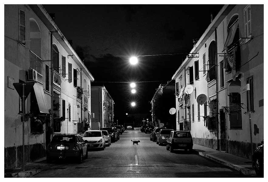 © Alessandro Comandini - alessandrocomandiniphoto.it