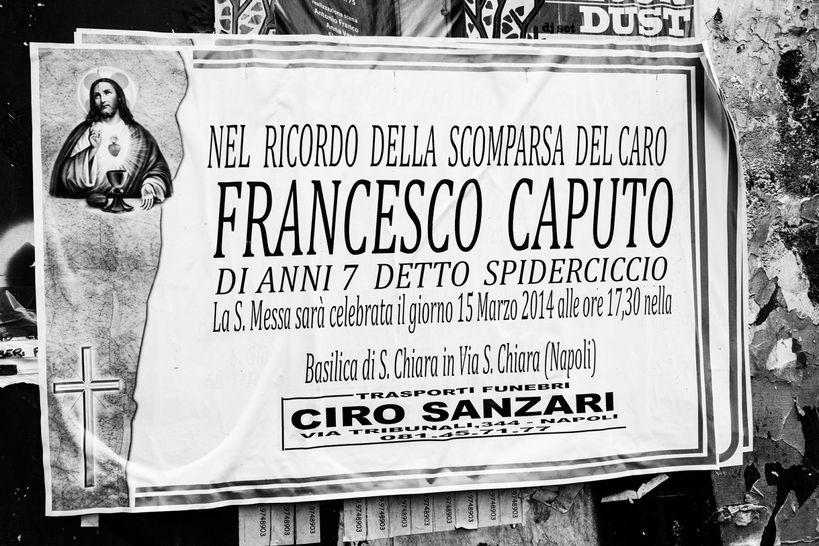 """Francesco Caputo, detto """"spiderciccio"""" - Napoli, 2015"""