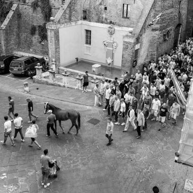 Il popolo del Cavallo